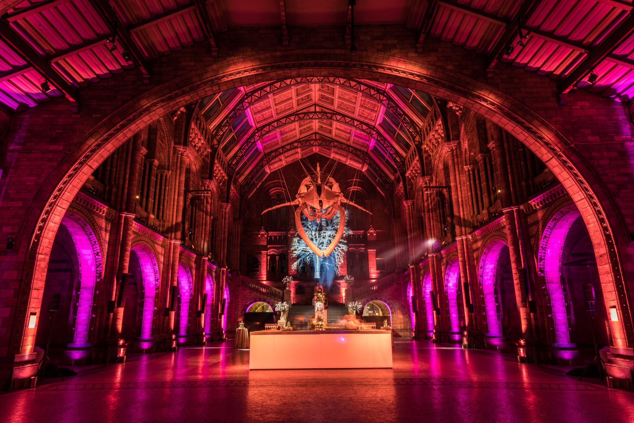Credit: Bespoke Events - Natural History Museum